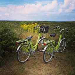 Road trip en bretagne ile de groix pointe du raz pointe du van quiberon guilvinec vanlife van par myfoodandtravel (59)